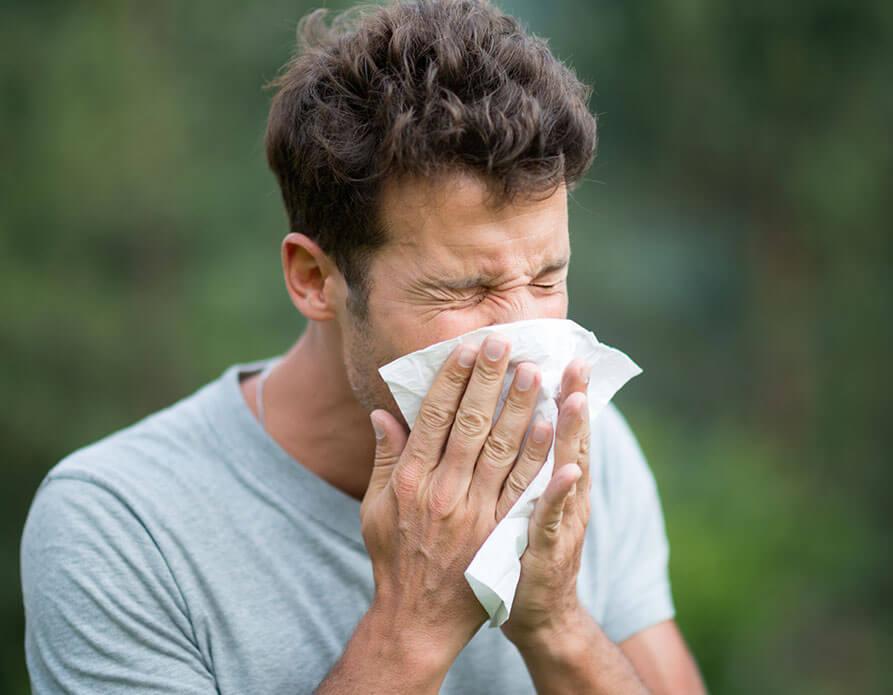 allergi_img2